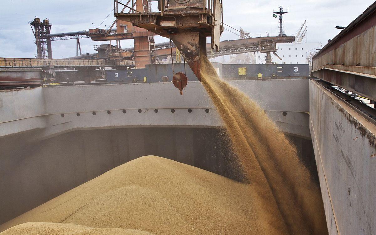 Перевозка зерна морем